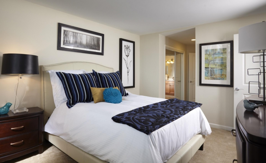 View photos for Arlington one bedroom apartments